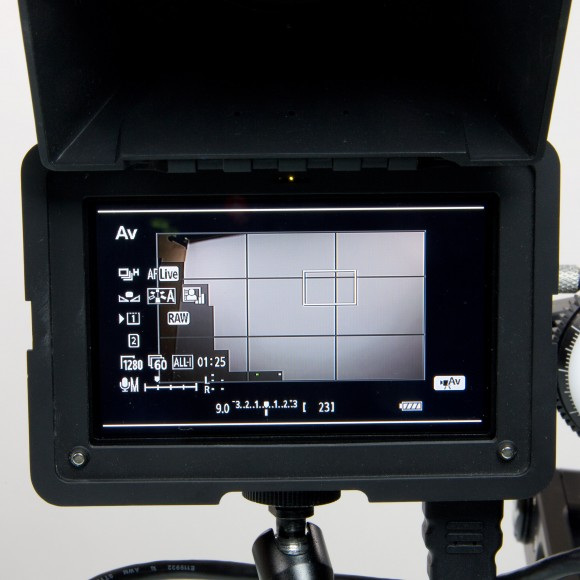 DP4-EVF - Screen