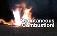 Spontaneous Combustion Demo