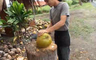 Coconut Carving on Geek Beat Vlog 50