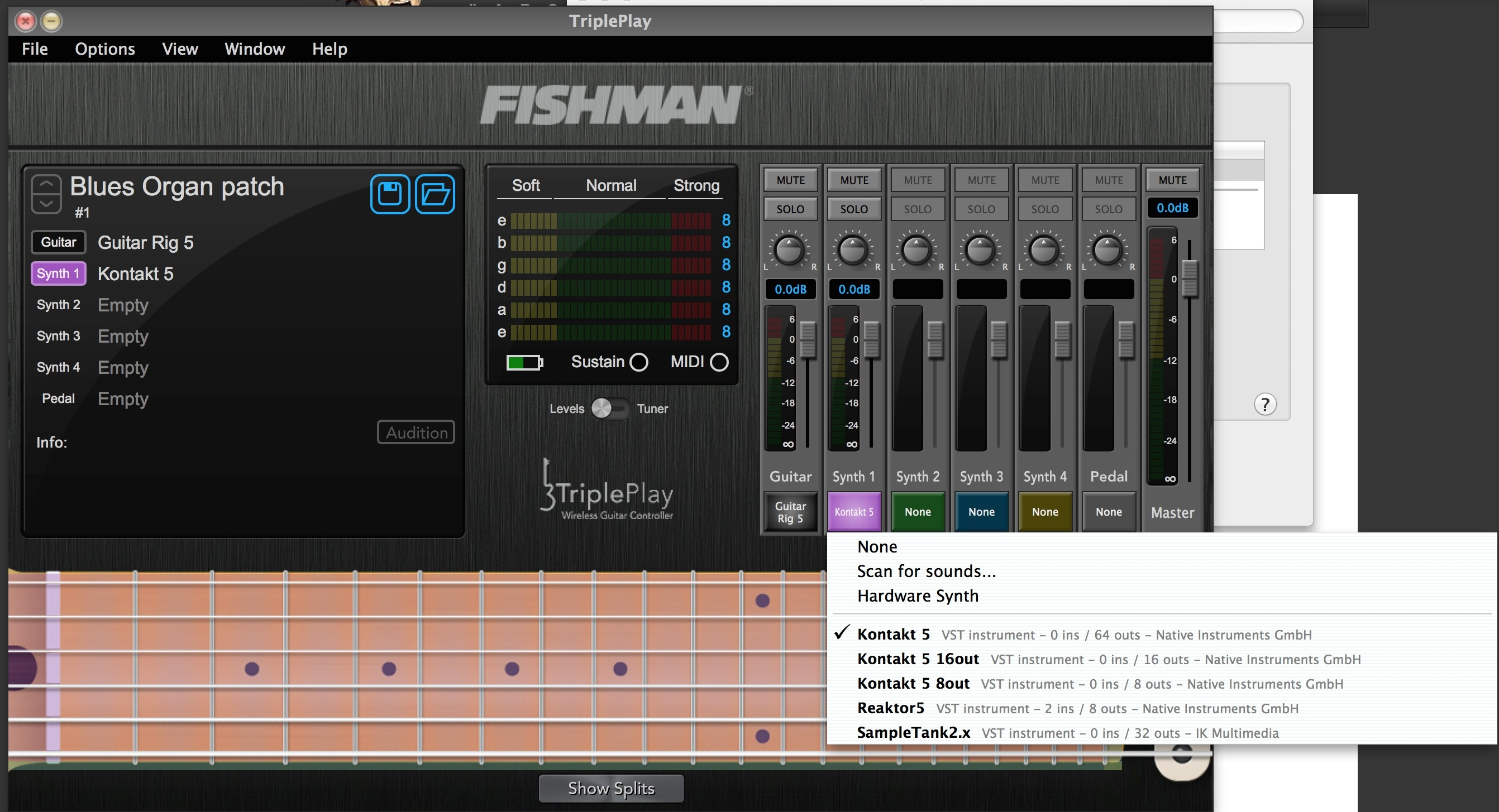 Fishman-triple-play-menu