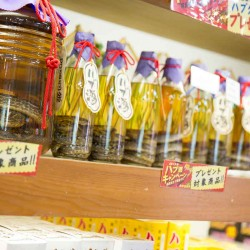 Okinawa World Snake Liquor 5